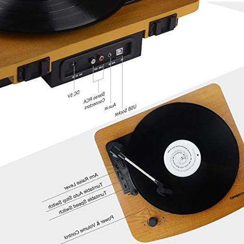 Musitrend Stereo Vintage Style Record Recording, Jack